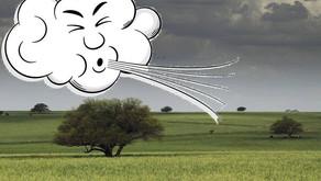 Hay alerta por vientos fuertes del norteste