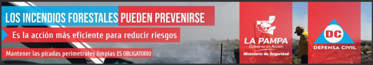 Incendios 737 x 125 - nov 2020.png