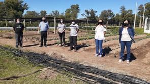 Delegación de SENASA visitó los proyectos hortícolas de Winifreda