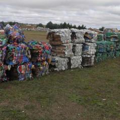 ¿ Cómo contribuimos en Winifreda al reciclaje?