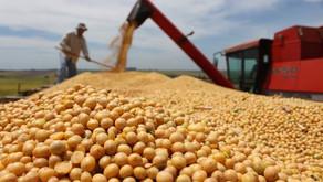 La Pampa tuvo un crecimiento de 19,1% en las exportaciones
