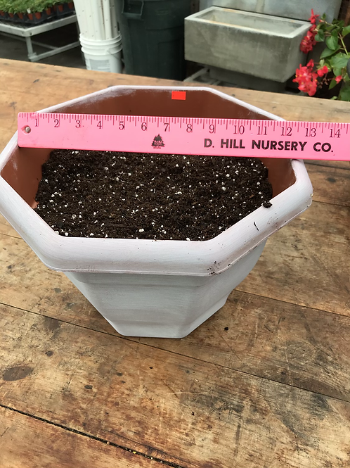 "13"" plastic pot filled with soil"