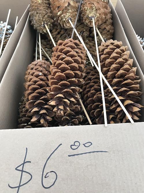 Sugar cone natural