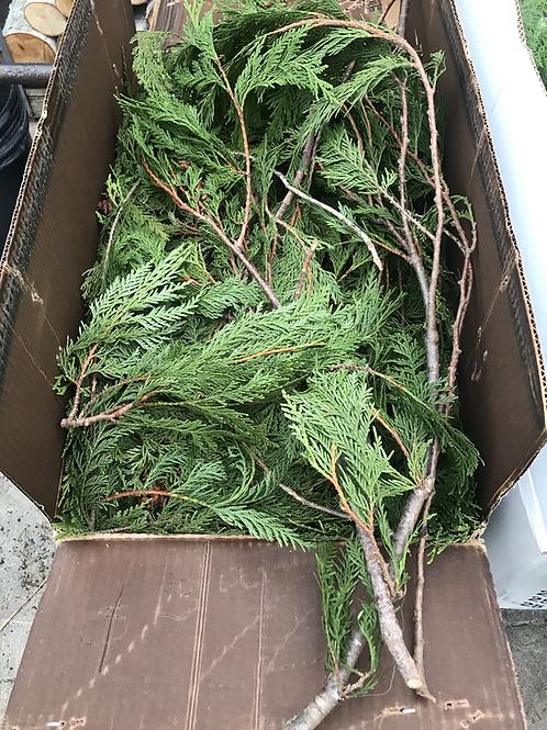 Coned Cedar(price per lb)