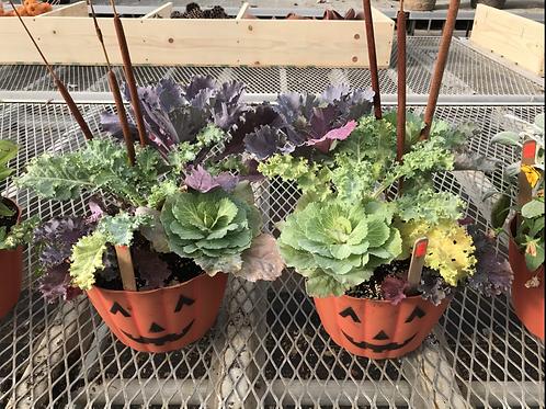 Fall pumpkin planter