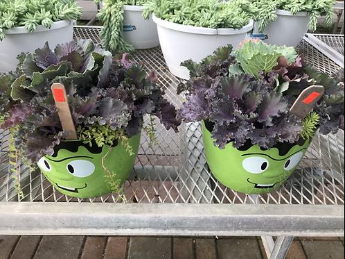 Green Hulk planter