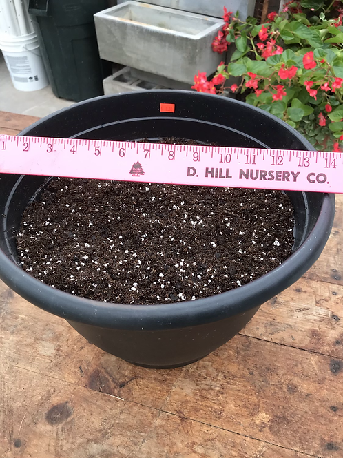 "14"" plastic pot filled with soil"