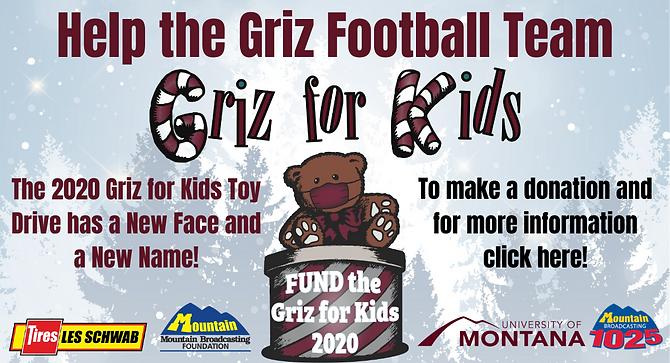 GRIZ FOR KIDS SLIDER MOUNTAIN.png