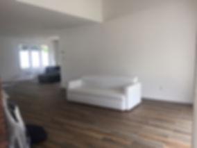 Merrick NY Living Room.JPG
