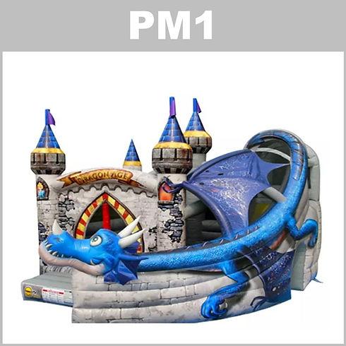 pm1-2-aluguer-insuflaveis-pulamania..JPG