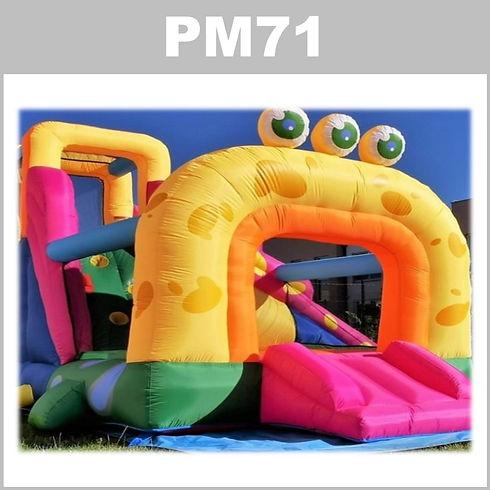 pm71-3-aluguer-insuflaveis-pulamania..JPG