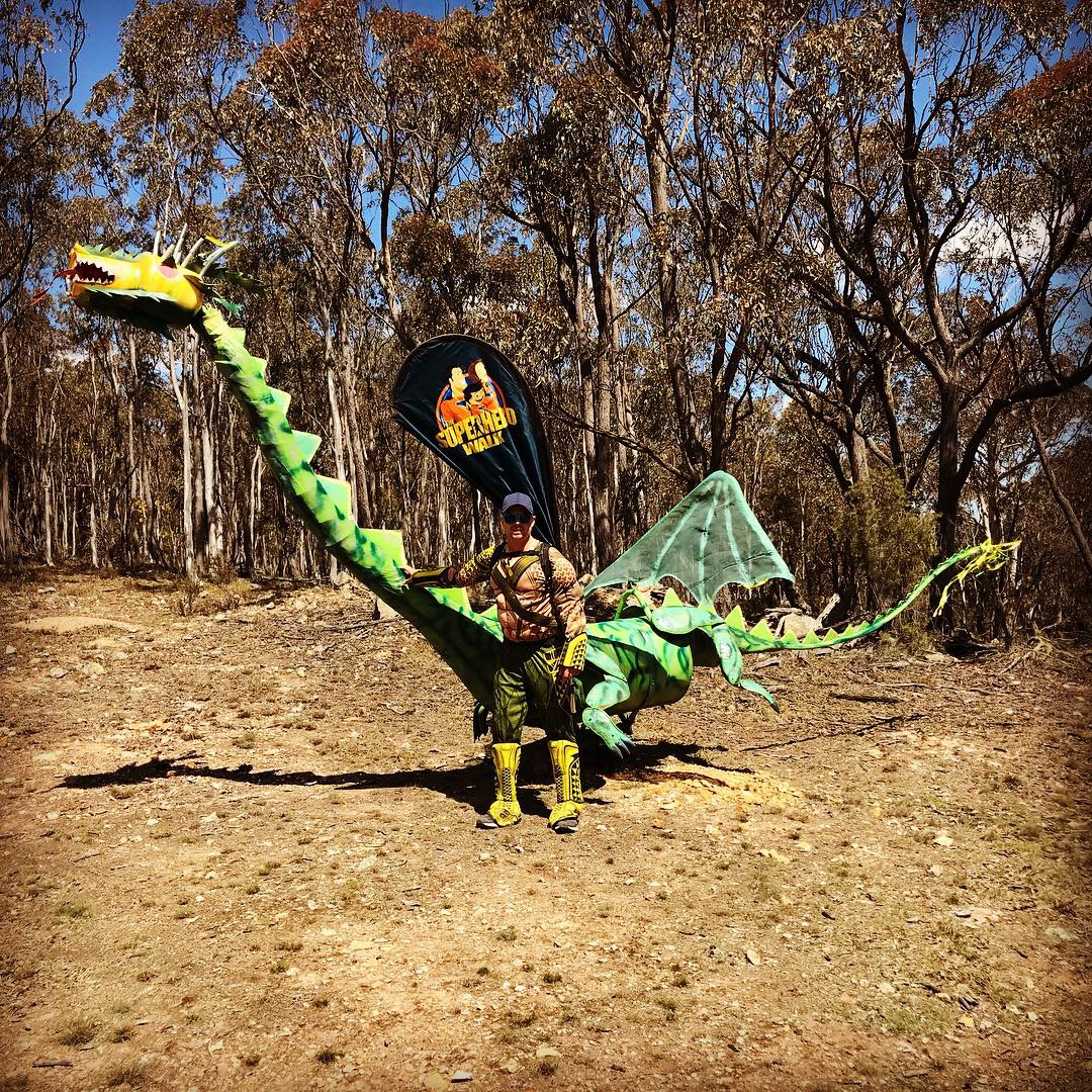 Bush dragon 2018