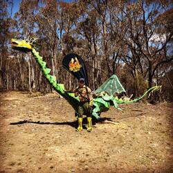 Bush dragon 2018