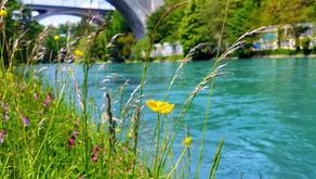 Nachhaltigkeitswochen an Schweizer Hochschulen von Februar bis Mai 2020
