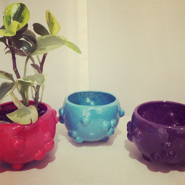 Maceta burbuja ! #maceta  #burbujas #ceramica #flores #vivero