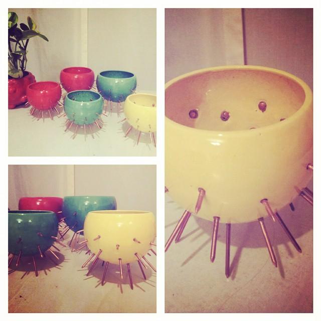 Maceta cactus!! Entraron mas colores!! #suculentas #cactus #maceta