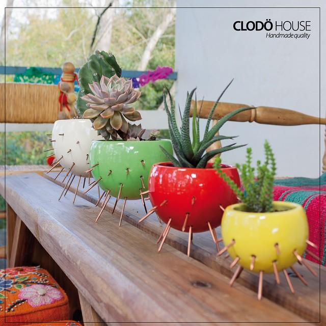 Macetas en todos los colores!! próximamente ! #clodohouse #suculentas #cactus #buenosaires #macetas