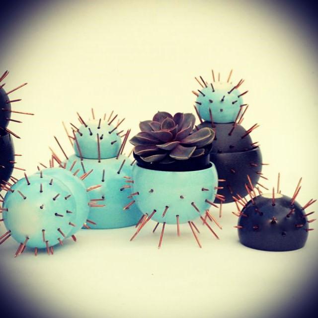 Macetas Cactus!!! Varios colores ! #suculentas #cactus
