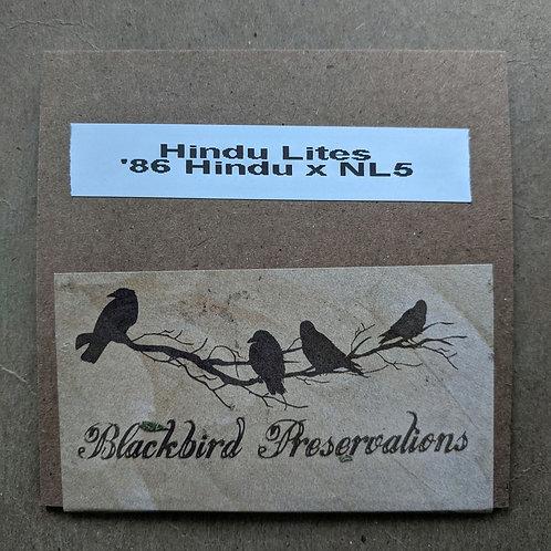 Hindu Lites