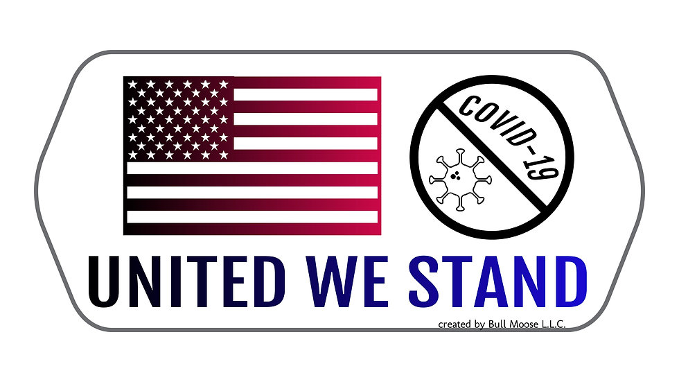 United We Stand anti-COVID-19 car decal set of 2: free shipping