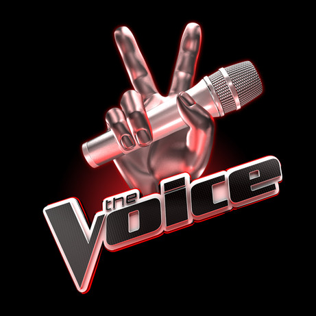 voice2.jpeg