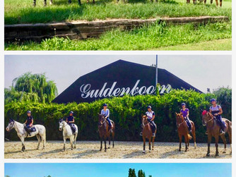 Equestrian Center La Madonnina: live your dream!