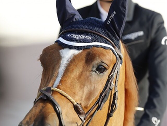 New entry for the LGCT in Shanghai !