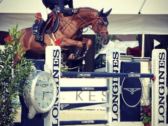 Never Alone best 6 y.o. in show at Ascona!
