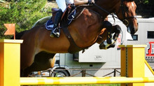 The Youngsters in evidence at the Sanremo CSI