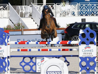 Izmir, Foica and LGCT of Cannes
