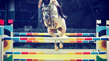 An Autumn of Italian show jumping!