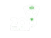 zap_optimized2.png