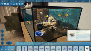 Have you always wanted an Aquarium but can't? Fishkeeper - Kickstarter is your answer!