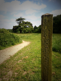 Grounds paths