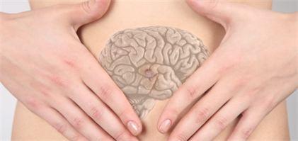 L'intestin, notre second cerveau!