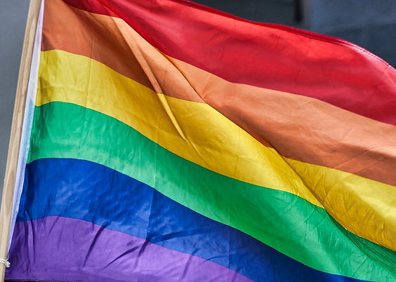 rainbow-flag-4426296_1920 (1).jpg