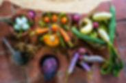jungle_living_raw_food.jpg