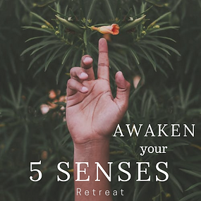 Awaken 5 Senses.png