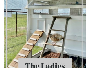 The Ladies | Hen House Sign | Free SVG