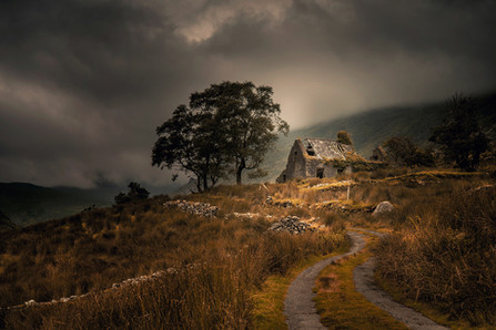 'Kerry Cottage' by Roger Eager - PAGB Gold Medal
