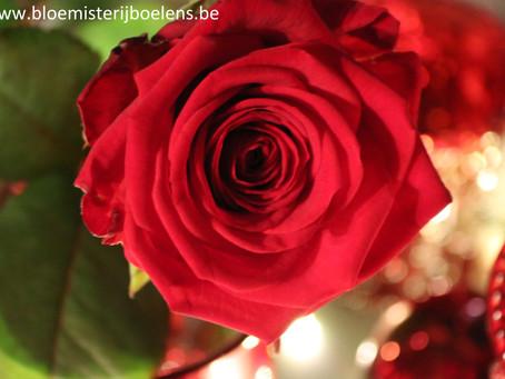 Valentijn zondag 14 feb : open van 8 u tot 13 u