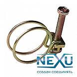 nexu-_1.jpg