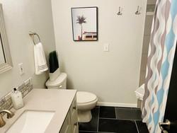 Mid Century Bathroom .jpg
