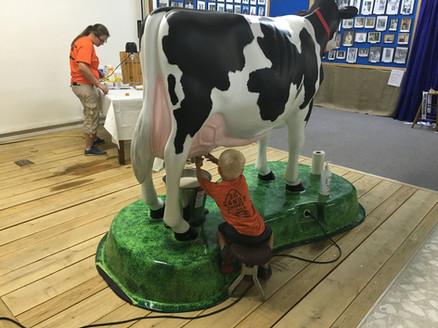 Milking Merrilea!