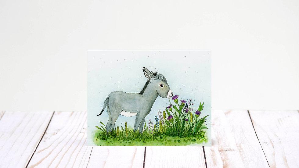 Jenny Thistle - 5x7 Card