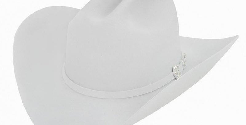 10x Larry Mahan Jerarca Fur Felt Cowboy Hat Platinum