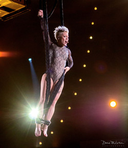Pink! at the Grammy's 2014