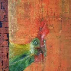 drunk rooster