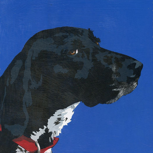 Dog portrait, pet portrait, Pet Gifts