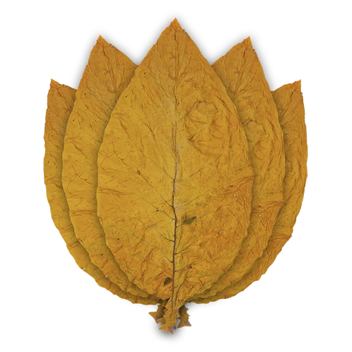 Half a Pound of Quality Canadian Virginia Gold Tobacco Leaf